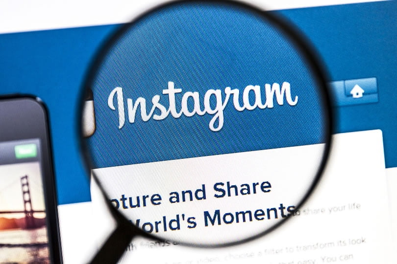 The Instagram Algorithm Can Help You Dominate Your Region – Here's How
