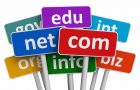 Should You Use a gTLD Domain Name for Your Website? A Study into .CARS