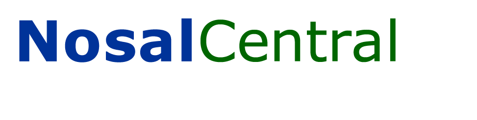 NosalCentral - Digital Marketing Consultancy