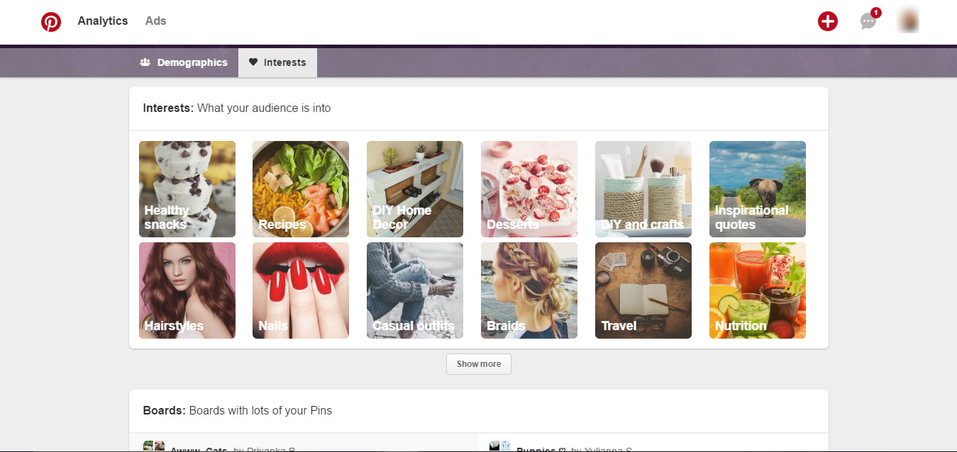 Pinterest People You Reach Interests Report
